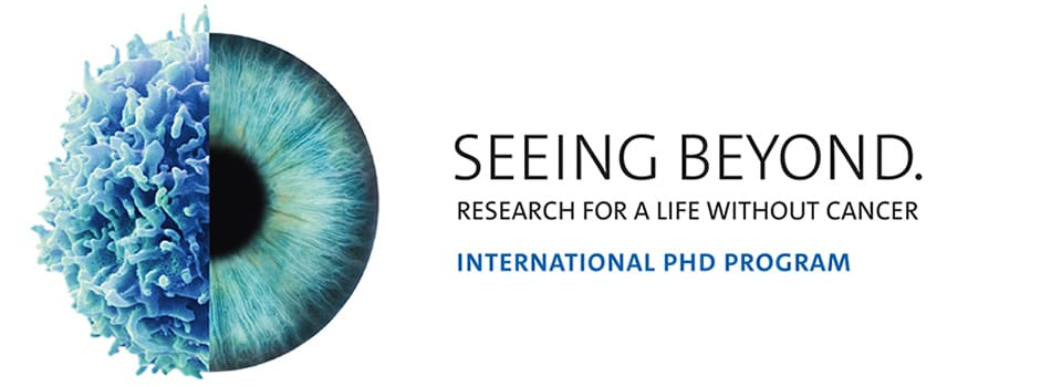 PhD Positions in Cancer Research at the German Cancer Research Center in Heidelberg