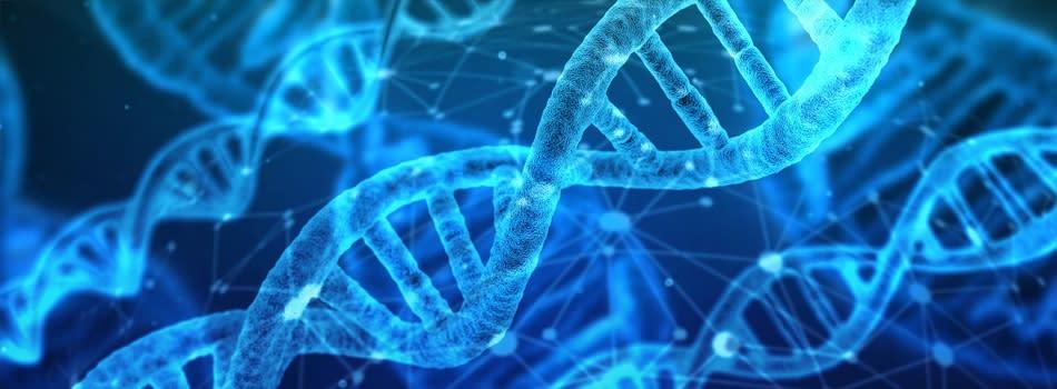 Medical Research Council (MRC) Parkinson's Disease and Neurodegeneration PhD Programme 2019/2020