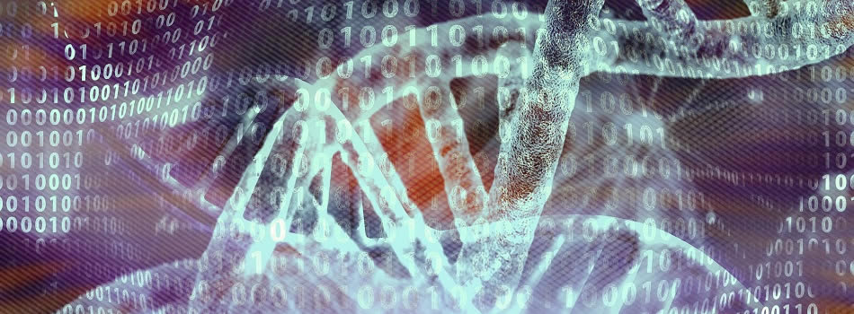 UKRI Centre for Doctoral Training in Biomedical Artificial Intelligence